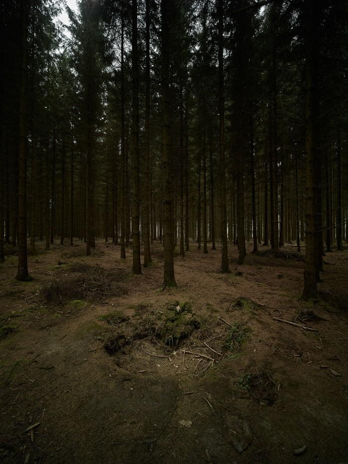 Markus Bertschi Foxhole Schuetzengraben Wald Belgien 2. Weltkrieg EWZ Selection Swiss Photo Award