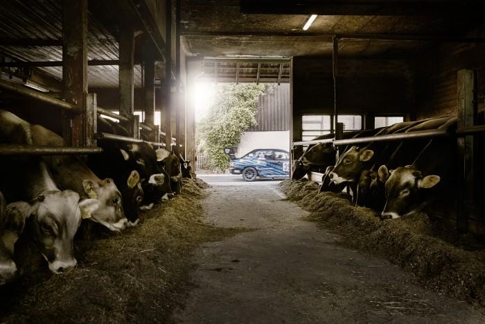 Noe Flum Roger Schnellmann Mitsubishi Lancer Evolution VIII Kühe Stall