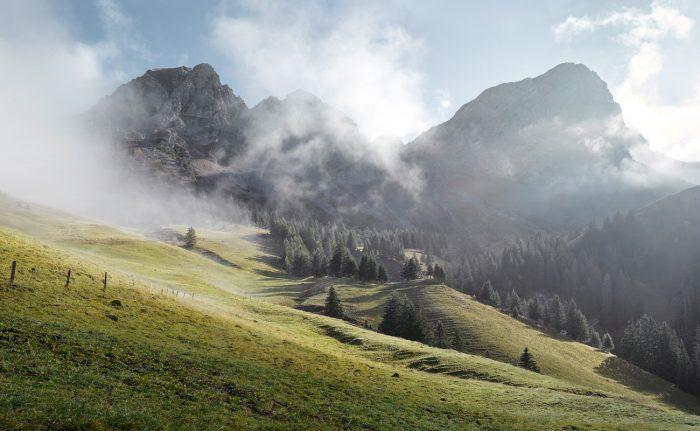 Gerber Loesch Coop Pro Montagna Alpkaese Schweizer Bergregion