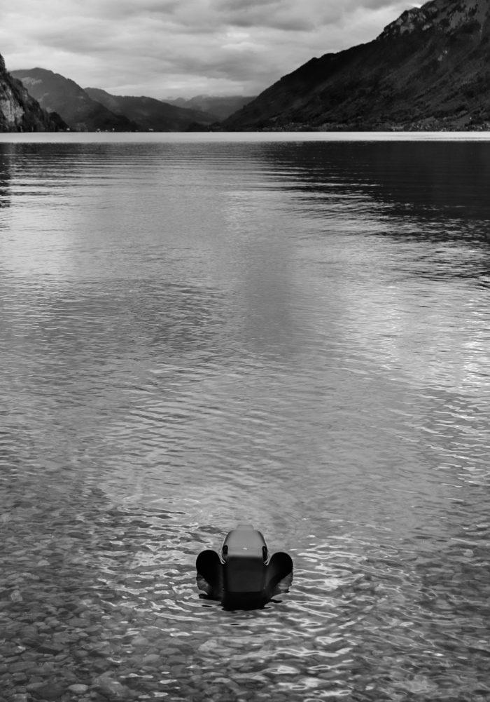 Noe Flum einzigart Eames Elephant See