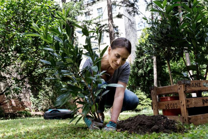 Markus Roessle Gardena Pflanzen Gartenarbeit