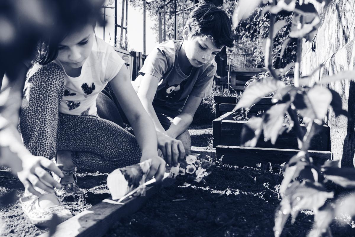 Kinderbuch Drueck mich Paul und Paula ISBN: 978-3-99028-778-1 Kinder gaertnern Garten pflanzen