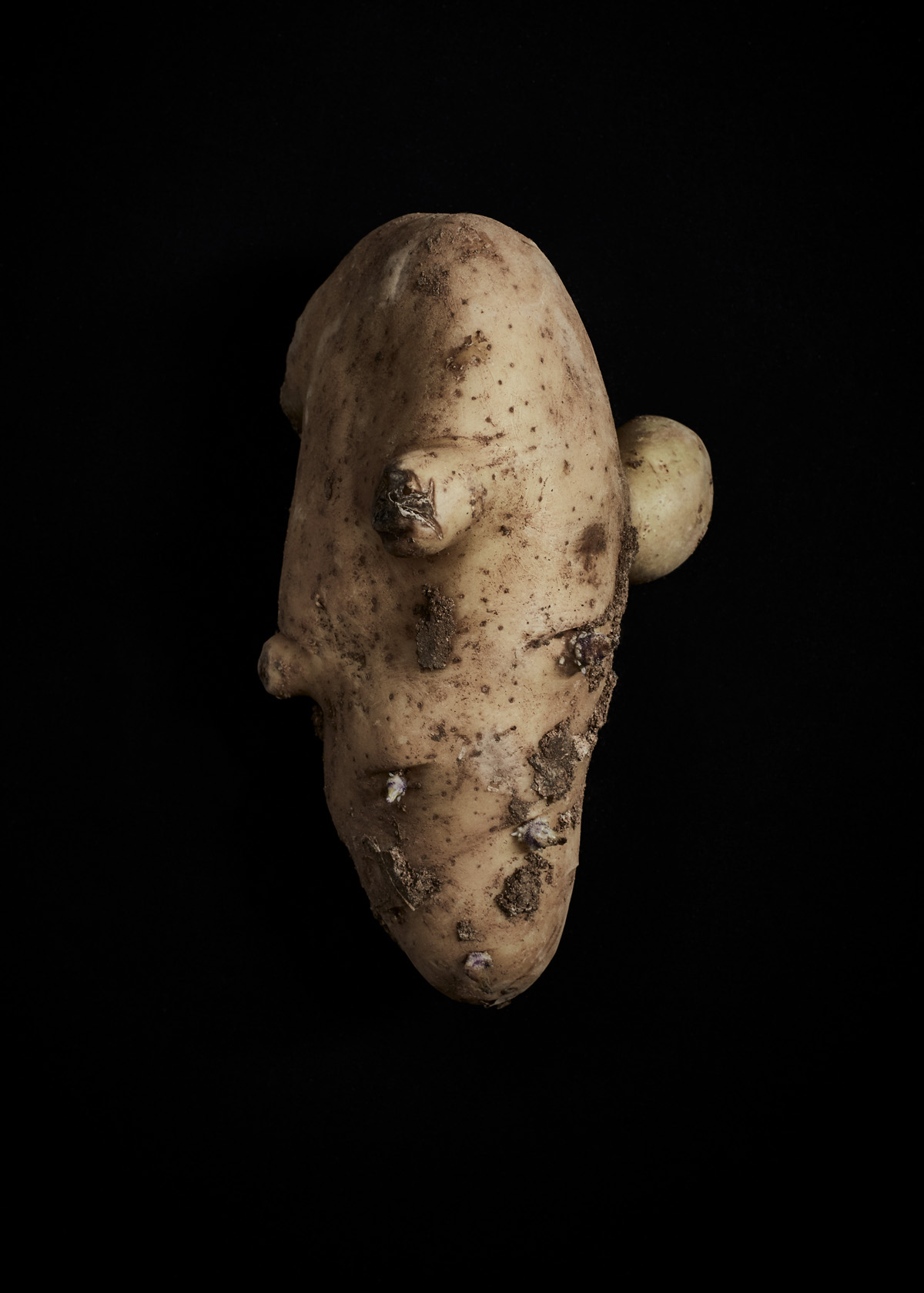 Lea Meienberg Sardinien 2018 Kartoffel